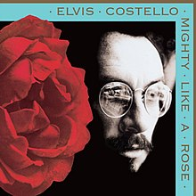[Image: 220px-Elvis_Costello_-_Mighty_Like_a_Rose.jpg]