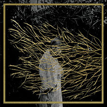 Forest Swords Engravings Album.jpg