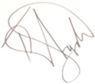 Tinchy Stryder - Image: Kwasi Danquah III (Tinchy Stryder) signature