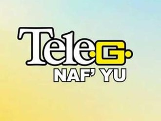 Telesur (Suriname) - TeleG Logo
