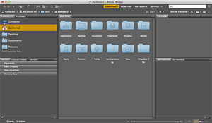 Adobe Bridge - Image: Adobe Bridge CS6 Screenshot