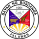 Official seal of Busuanga
