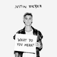Justin Bieber — What Do You Mean? (studio acapella)