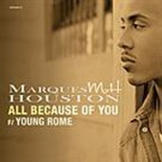 All Because of You (Marques Houston song) - Image: Marquesallbecauseofy ou