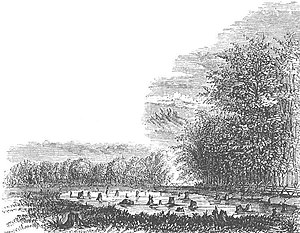"Pyle's Massacre - ""Pyle's Pond"" by Benson Lossing, 1852"