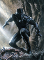 Picture of Black Panther