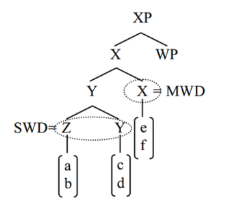 A-not-A question - Syntactic distinctions between morphosyntactic words (MWd) and subwords (SWd)