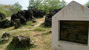 Sonbhadra district - Salkhan Fossils Park in sonbhadra district