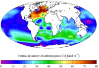 "Vertical inventory of ""present day"" (1990s) anthropogenic CO2"