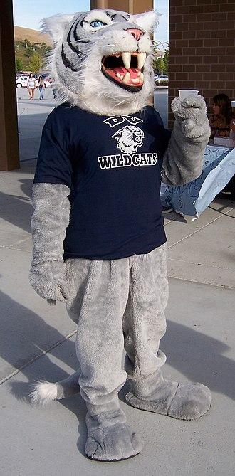 Dougherty Valley High School - Image: DVHS Willy the Wildcat