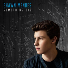 220px-Shawn_Mendes_-_Something_Big_(Offi