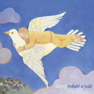 Shleep - Image: Shleepalbumcover