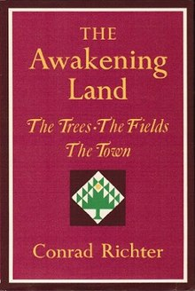 Any websites that have critical articles on the book, The Awakening?