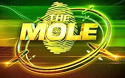 The Mole Culture Clash.jpg