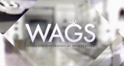 WAGS tv logo.png