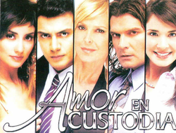 Amor en Custodia (TV series) - Wikipedia, the free encyclopedia