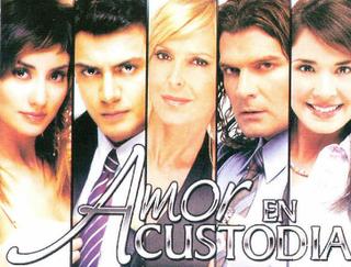 <i>Amor en custodia</i> (Mexican TV series)