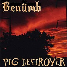 Studio album by Ben  252 mb and Pig DestroyerPig Destroyer Explosions In Ward 6