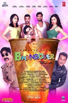 Journey of Bhangover (2018) Hindi HDTVRip 720p 1.2GB AC3 MKV