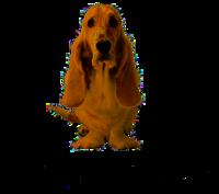 Hush Puppies Wikipedia