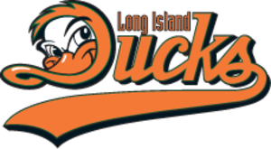Long Island Ducks - Image: LI Ducks