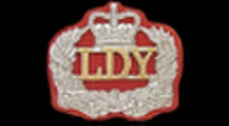 Leicestershire and Derbyshire Yeomanry - Image: Leicestershire and Derbyshire Yeomanry (NCO arm badge)