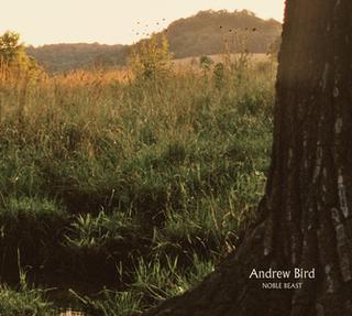 <i>Noble Beast</i> 2009 studio album by Andrew Bird