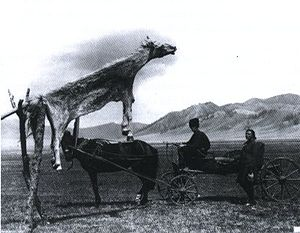 Alone (1931 film) - The totem of a dead horse is used to represent the primitive condition of the villagers.