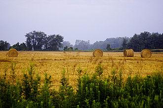 Pinconning, Michigan - Image: Pinconning Straw