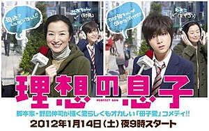 Perfect Son - The promotional poster for the drama