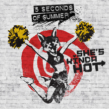 5 Seconds of Summer - She's Kinda Hot (studio acapella)