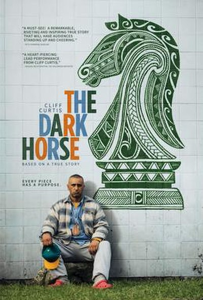 Picture of a movie: The Dark Horse