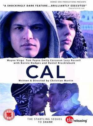 Cal (2013 film) - DVD cover