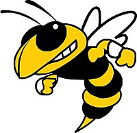 Starkville High School Yellowjacket.jpg