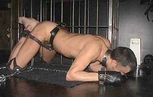 "Animal roleplay - A submissive male ""puppy"" using bondage restraints to restrict movement and eating from a dog bowl. Note the cage in the background and kneepads for extended play."