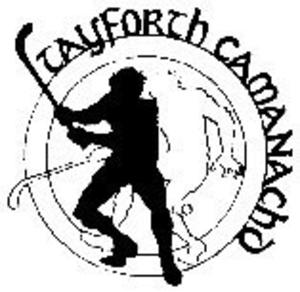 Tayforth Camanachd - Image: Tayforth camanachd
