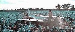 the aviator 2004 film wikipedia