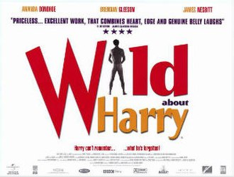 Wild About Harry (2000 film) - Theatrical release poster
