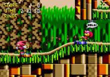 "Gameplay screenshot of Knuckles and Espio in Isolated Island, the first level of Knuckles' Chaotix. This particular screen shows the game's cooperative ""rubber band"" physics in action."