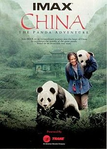 China The Panda Adventure.jpg