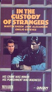 <i>In the Custody of Strangers</i> 1982 television film by Robert Greenwald