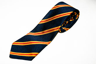 Richmond School - A pre-2010 Richmond School tie