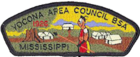 Yocona Area Council CSP.png