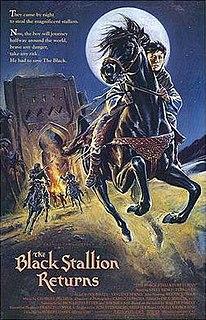 <i>The Black Stallion Returns</i>