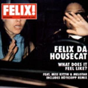 What Does It Feel Like? - Image: Felix da Housecat What Does It Feel Like
