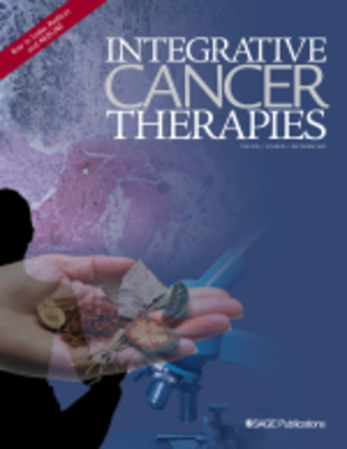 Image result for integrative cancer therapies
