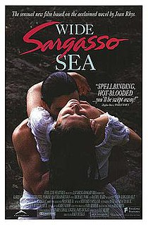 <i>Wide Sargasso Sea</i> (1993 film) 1993 film by John Duigan
