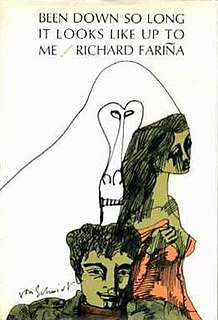 <i>Been Down So Long It Looks Like Up to Me</i> book by Richard Fariña