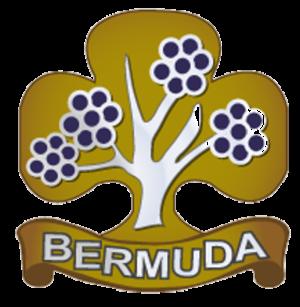 Girlguiding Bermuda - Image: Girlguiding Bermuda