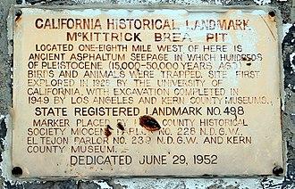 McKittrick, California - Image: Mc Kittrick California asphaltum seepage